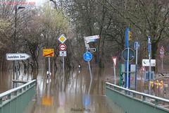 Rhein Hochwasser - Rhine flood in 2018 (Noodles Photo) Tags: rhein rhine flood hochwasser monheimamrhein düsseldorf urdenbacherkämpe urdenbach baumbergeraue baumberg roadsigns trafficsigns verkehrsschilder wasser water landunter spiegelung canoneos7dmarkii ef24105mmf4lisusm nordrheinwestfalen northrhinewestphalia deutschland germany autofährezons
