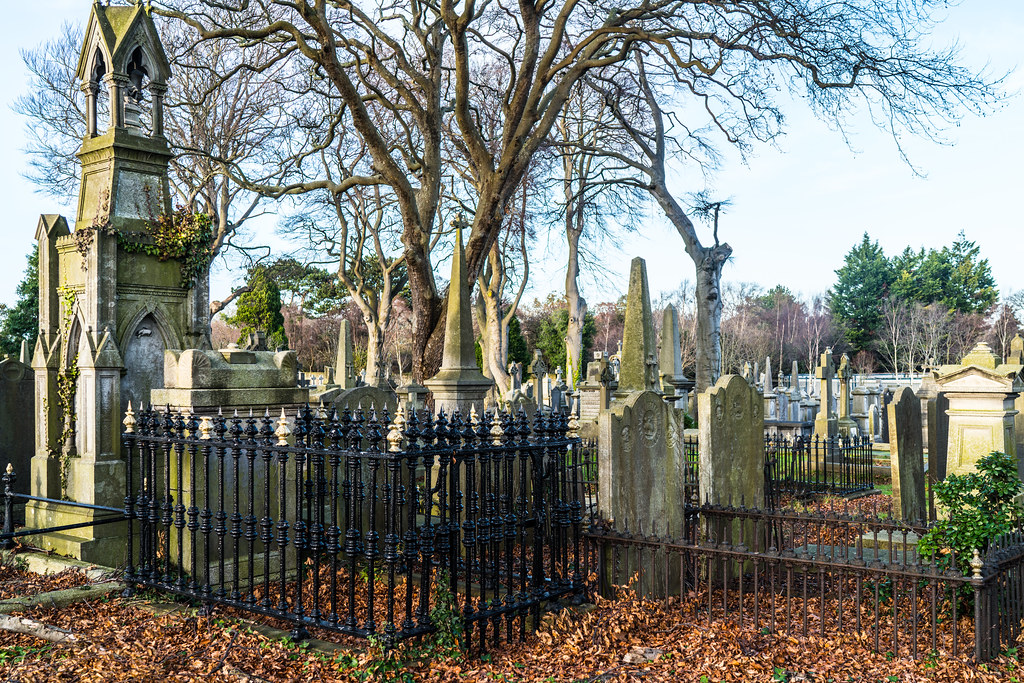 VISIT TO GLASNEVIN CEMETERY IN DUBLIN [FIRST SESSION OF 2018]-134874