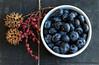 Kitchen Potpourri (dshoning) Tags: odc celebratethecommonplace blueberries twine bowl seeds kitchen stilllife