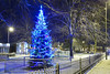 The Christmas Tree & Fountain, Bloxwich 08/12/2017 (Gary S. Crutchley) Tags: christmas xmas tree bloxwich fountain snow winter uk great britain england united kingdom urban town townscape walsall walsallflickr walsallweb black country blackcountry staffordshire staffs west midlands westmidlands nikon d800 history heritage local night shot nightshot nightphoto nightphotograph image nightimage nightscape time after dark long exposure evening travel street slow shutter raw 1635mm f40g af s ed nikkor