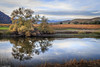Vineyard and Pond (allentimothy1947) Tags: golden napacounty autumn landscape red vines vineyards winery yellow california reflections oaktree pond sky clouds beautiful beauty
