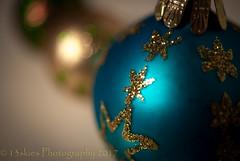Holiday Macro (HMM) (13skies) Tags: merrychristmas macromondays bokeh hmm bauble hang macroscopic close sonyalpha100 sony a100 christmas colour depthoffield dof focus focallength