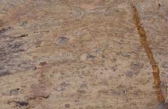 Riólito (CVS) (correia.nuno1) Tags: alentejo geologia paleozoico petrogafia estratigrafia beja rochasmagmáticas riólito orogeniavarisca devónico portugal geologie geology magmaticrocks petrography rhyolite
