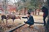 Nara Park - Japan (fgazioli) Tags: japan nara nature asia natureza travel outdoor autumn