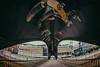... Visiones de MADrid ... (Lanpernas .) Tags: madridrío puente cúpula paint streetart street madrid visionesdemadrid urbanite city spain barrio skate pasarela manzanares peleng ojodepez fisheye