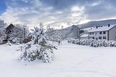 171201 Schnee (Bernd März) Tags: berndmärz schnee schneeschwarzwald schneebruch schneebruchschwarzwald schwarzwaldschneebruch schneemassenschwarzwakd schneemassenschwarzwaöd schneemassenschwarzwald schwarzwald deutschland deu