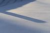 PC313681 (Paul Henegan) Tags: 32crop abstract highlights shadows snow