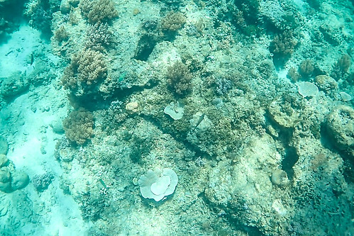 Gili Air Underwater