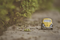 New Year New Roads New Journey (Ayeshadows) Tags: minimalism mini cars travel new year roads yellow woods