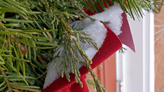 Wreath Wremains (MTSOfan) Tags: christmas greens wreath bow snow winter tired old expired decoration needles
