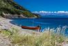 Lark Harbour, Newfoundland (londa.farrell) Tags: 2017 august canada canon canondslr canoneos7dmarkii dslr larkharbour newfoundland boat daytime harbour ocean outdoor shore summer newfoundlandandlabrador