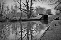 Lock 93, Heale's Lock (stavioni) Tags: kennet avon canal woolhampton berkshire black white lock heales 93 water reflection