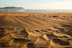 After the windy afternoon (Rod Burgess) Tags: southdurras australia beach sand canoneos5dmarkiv canon1635f4l wind