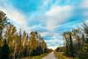 Fall Colors - George Washington State Forest, Nashwauk, Minnesota (Tony Webster) Tags: georgewashingtonstateforest minnesota nashwauk northbucklakeroad october autumn fall fallcolors forest stateforest trees unitedstates us