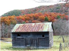 The road to Sugar Grove (cscott_va.) Tags: old barn