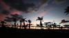 Cuban Sunset (Roozbeh Rokni) Tags: cuba cayosantamaria suset roozbehrokni cuban beach beauty vacation love palmtrees cubanbeauty