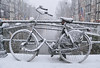 A wet brush of snowflakes on the bicycle (B℮n) Tags: bike snow covered bikes bicycle holland netherlands canals winter cold wester church street anne dutch people scooter gezellig cafés snowy snowfall atmosphere colorful walk walking cozy light corner water canal weather cool sunset file celcius mokum pakhuis grachtengordel unesco world heritage sled sleding slee seagull nowandthen meeuw seagulls meeuwen bycicle 1°c sun shadows sneeuw brug slippery glad flakes handheld wind code oudezijdsvoorburgwal sintjansbrug walletjes redlight amsterdam besneeuwde wit white fietst locked 100faves topf100 200faves topf200