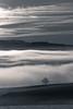 sky/hills/fog/tree/snow (tom.leuzi) Tags: bw baum canonef70200mmf4lisusm canoneos6d himmel nebel schweiz switzerland wolken backlit blackandwhite branch clouds fog mist schwarzweiss sky tree winter