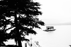 Fähre am See (jazzfoto.at) Tags: sony sonyrx100m3 rx100m3 rx100miii sonyrx100iii sonydscrx100iii dscrx100iii italien italia italy olaszország itálie италия włochy italië sw bw schwarzweiss blackandwhite blackwhite noirblanc bianconero biancoenero blancoynegro fähre baum ferry boot tree traghetto albero lago urlaub feriado semester dovolená vacation vacances loma vacanza święto odmor pretoebranco