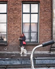 companions (berberbeard) Tags: netherlands holland niederlande fotografie photography urban berberbeard berberbeardwordpresscom groningen ilce7m2 itsnotatrick street primelens festbrennweite zeiss 35mm sony deutschland 35talifeproject 35mmprimelens architektur architecture fixedfocallength fixedfocaljunkie