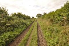 _DSC1888 (petelovespurple) Tags: ryedale northyorkshire appleton spaunton