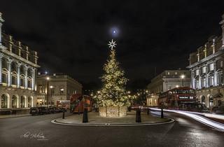 Moon topped Christmas Tree