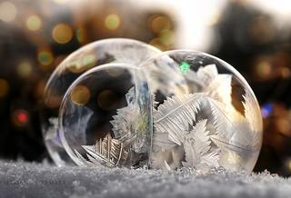 frozen bubble group