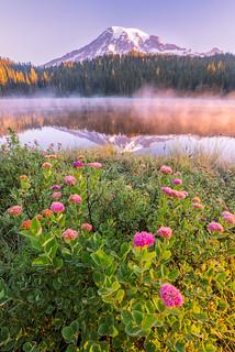 Sunrise at Rainier