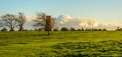 millview (stevefge) Tags: 2017 autumn beverley uk panorama landscape westwood cloud mill windmills trees bomen grass fields reflectyourworld yorkshire eastyorkshire