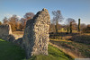 Berkhamsted Castle (EVERY SO OFTEN) Tags: england berkhamsted castle english heritage hertfordshire norman autumn fall flint motteandbailey ruin remains sonya900 konicaminolta1735mm outdoors daylight