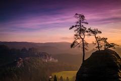 Above (sconi piladi) Tags: saxonian switzerland sächsische schweiz canon eos 5d mark iii himmel sky blue hour blaue stunde morgen morning sunrise sonnenaufgang rocks hills mountains felsen hügel berge trees bäume baum landscape landschaft