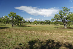 Front Lawn looking NE 1 (Largeguy1) Tags: approved landscape blue sky clouds canon 5d mark iii
