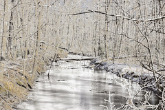 A Wintry Snowy Day (Thomas Vasas Photography) Tags: landscapes scenics winterscapes winter snow weather ice frozen seasons trees water coopercreekpark columbus georgia