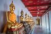 Gallery of Buddha statues at Wat Pho - Bangkok, Thailand (patuffel) Tags: gallery buddha statues statue wat pho bangkok thailand