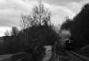 Branch line in shdadow. (The Railway Retrospective.) Tags: train rail uk england track light dark hobby railway engine locomotive day industry svr severn valley gwr tank hawksworth hampton loade