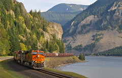 Home Valley, Washington (UW1983) Tags: trains railroads bnsf fallbridgesub graintrains homevalley washington columbiariver columbiagorge