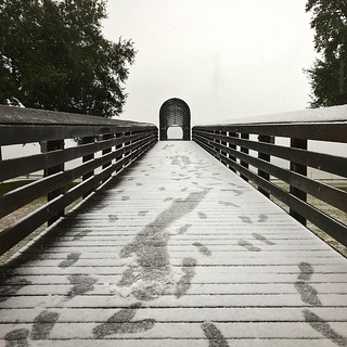 Wood - Material Railing Day Bridge - Man Made Structure The Way Forward Outdoors Footbridge Tree No People Built Structure Clear Sky Wood Paneling Architecture Nature Sky Bay St. Louis, MS St. Stanislaus at St. Stanislaus - Aurelian Hall