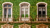 The Green House 1 - Lagos (L I C H T B I L D E R) Tags: portugal lagos faro grün green greenhouse grüneshaus fenster windows algarve kacheln tiles fassade architecture haus house