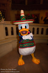 Donald Duck