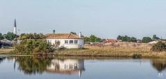 Ars en Ré- île de Ré ( Charente Maritime) (Didier Gozzo) Tags: poitoucharentes unlimitedphotos canon charentemaritime arsenré eau ciel sky water