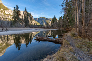 Yosemite Valley Stream