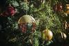 Y llego la Navidad!!! (www.beagalvan.com) Tags: navideño navidad árbolnavideño bolas adornos color interiores