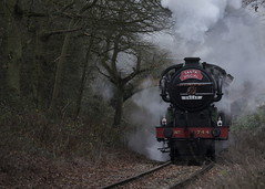 Santa-Special_7913 (Peter Warne-Epping Forest) Tags: eppingongarrailway peterwarne steamtrains steam trains essex 1744