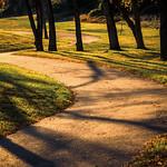 Golden Path thumbnail