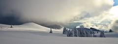 Nordic landscape (paul.porral) Tags: snow winter landscape mountain ngc flickr hiver paysage paisaje