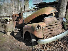 Seen beter days (Dave* Seven One) Tags: chevrolet chevy 3100 truck chevrolet3100 abandoned forgotten used broken rusty rust rot rotted decay farm roadsideamerica