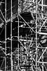 (Harry Halibut) Tags: 2017©andrewpettigrew allrightsreserved contrastbysoftwarelaziness noiretblanc blackwhite blancoynegro blanc weiss noire schwatz bw zwart wit bianco nero branco preto blackandwhite imagesofsheffield images sheffieldarchitecture sheffieldbuildings sheffield south yorkshire sheff1710294608 scaffolding steps stairs steel city house renovation shadows