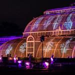 Christmas at Kew (The Palm House) thumbnail