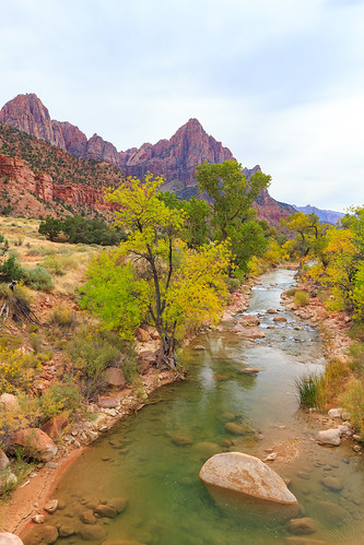 Virgin river in Zion NP