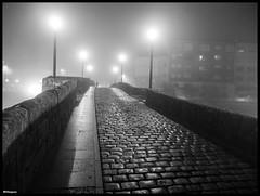 Puente Románico (galaico) Tags: olympus 1250 omd em 5 mkii monforte de lemos lugo galicia gallego galaico frío niebla ribeira sacra ribeirasacra zuiko puente medieval bridge nocturna noche fogg